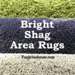Bright Shag Area Rugs
