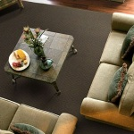Funky Chocolate Area Rugs