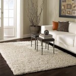 Cozy,  Comfy & Bright Shag Area Rugs