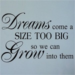 Use the Funk'N Power of Words with Wall Quotes about Following Your Dreams