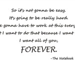 So It's Not Going to Be Easy The Notebook Wall Quote