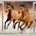 Funky Horse Wall Decals