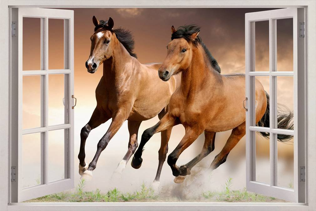 3D Horse Wall Window Decal