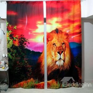 Lion 3D Drapes