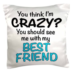 You Think I'm Crazy You Should See My Best Friend Pillow