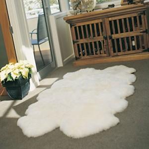 Area Rug to Put Over a Carpet