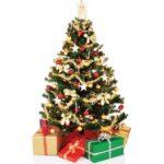 Include a Funky Cardboard Christmas Tree
