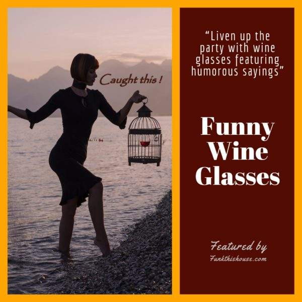 Wine Glasses with Funny Sayings on Them