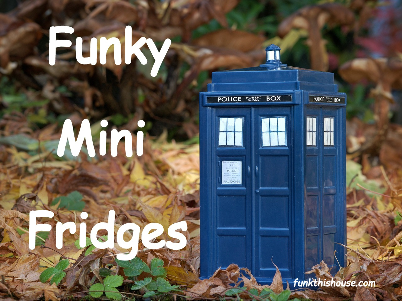 Funky Mini Fridges
