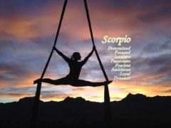 Scorpio Home Decor – A Room for the Scorpion