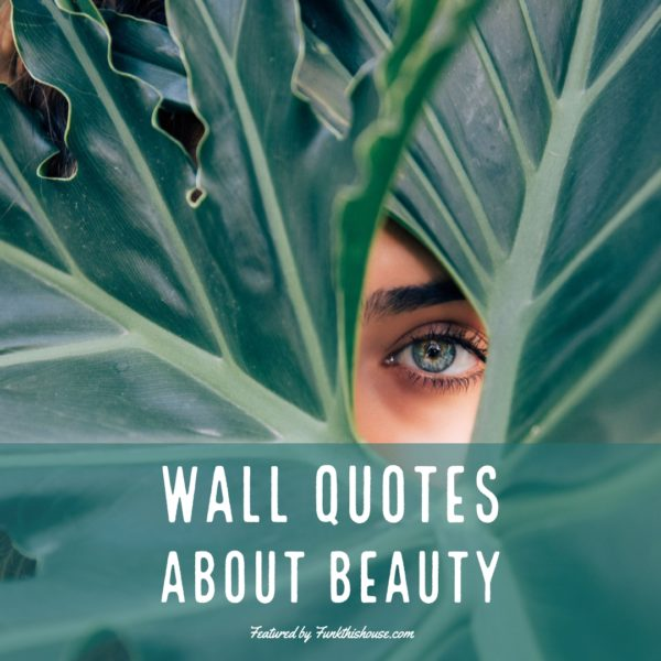 Wall Quotes about Beauty