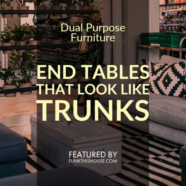 Trunks that Look Like End Tables