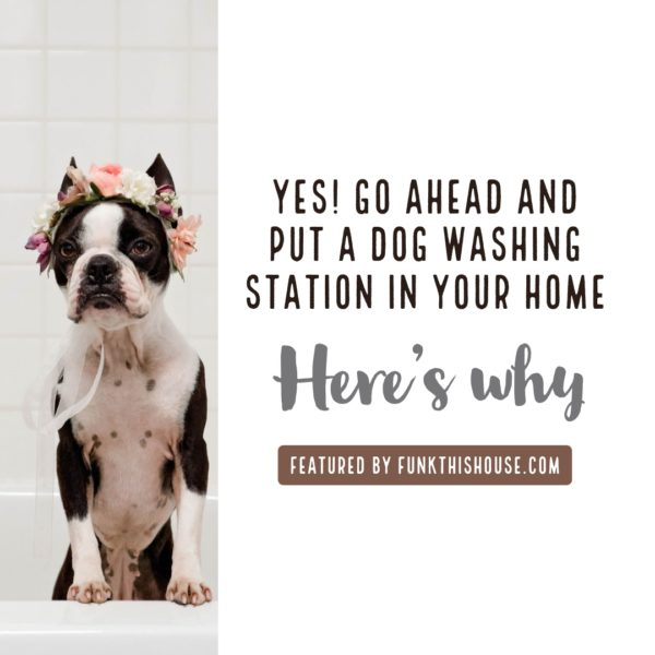 Dog Washing Stations and Why They're a Good Idea