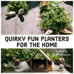 Fun and Quirky Planters for the Home