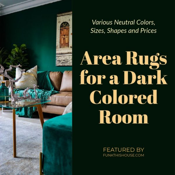 Area rugs for a Dark Colored Room
